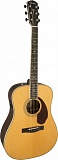 Fender PM-1 Deluxe Dreadnought Natural